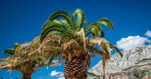 4 Makarska